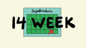 14 Week LSAT Study Schedule